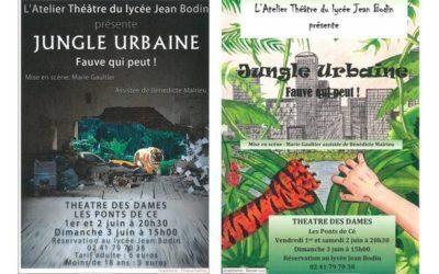 Représentations de l'Atelier Théâtre (01, 02 et 03 Juin).